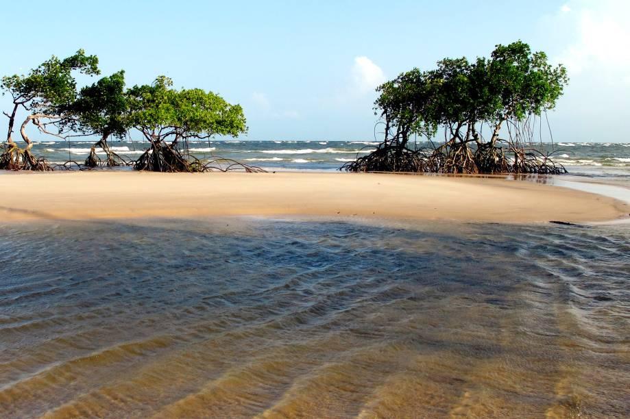 Praia na Ilha de Marajó, no Pará