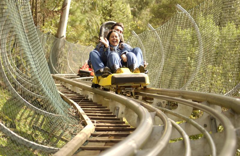 O Alpen Park tem 10 atrações voltadas para a aventura. A mais procurada é o trenó. Em estilo de montanha-russa, o passageiro controla a velocidade num percurso de 900 m