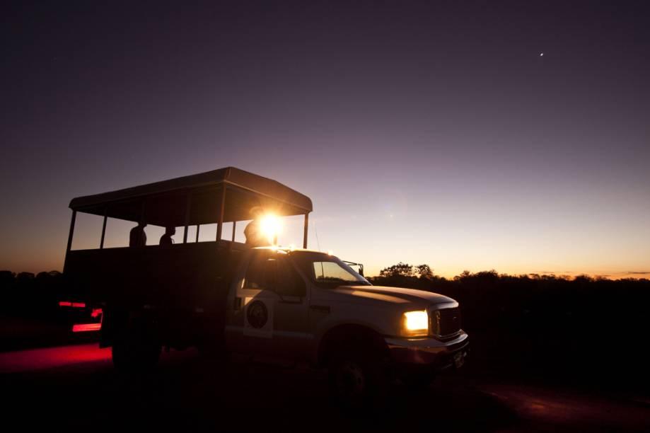 A focagemé a melhor oportunidade para observar os animais de hábitos noturnosno Pantanal. Cada parada do caminhão é uma surpresa! Pode ser um lobinho, uma coruja, um tamanduá ou, quem sabe, até uma onça-pintada