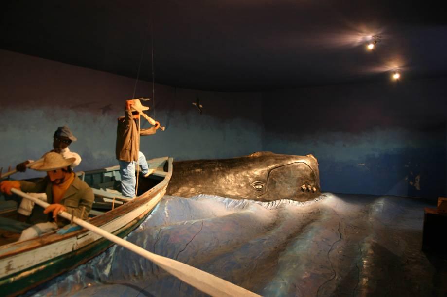 O Museu Nacional do Mar recapitula a história das navegações desde a antiguidade e presta homenagem à tradição naval brasileira. Com mais de 80 barcos brasileiros e mais de 280 miniaturas de embarcações é uma das principais atrações de São Francisco do Sul (SC)