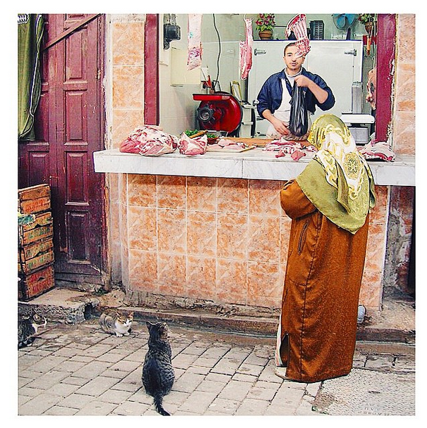 Olha que mimo, a mulher compra a carne e os gatinhos estão ali, ligadões.