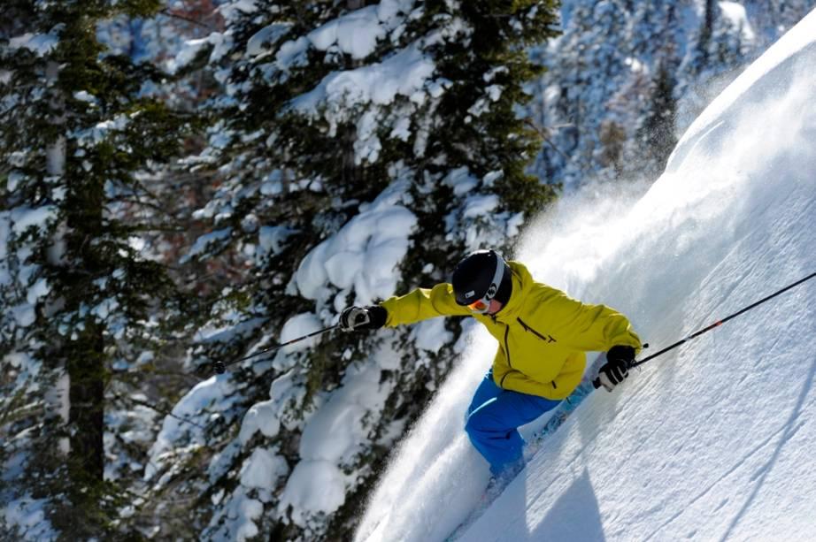 Powder snow em Vail, Colorado