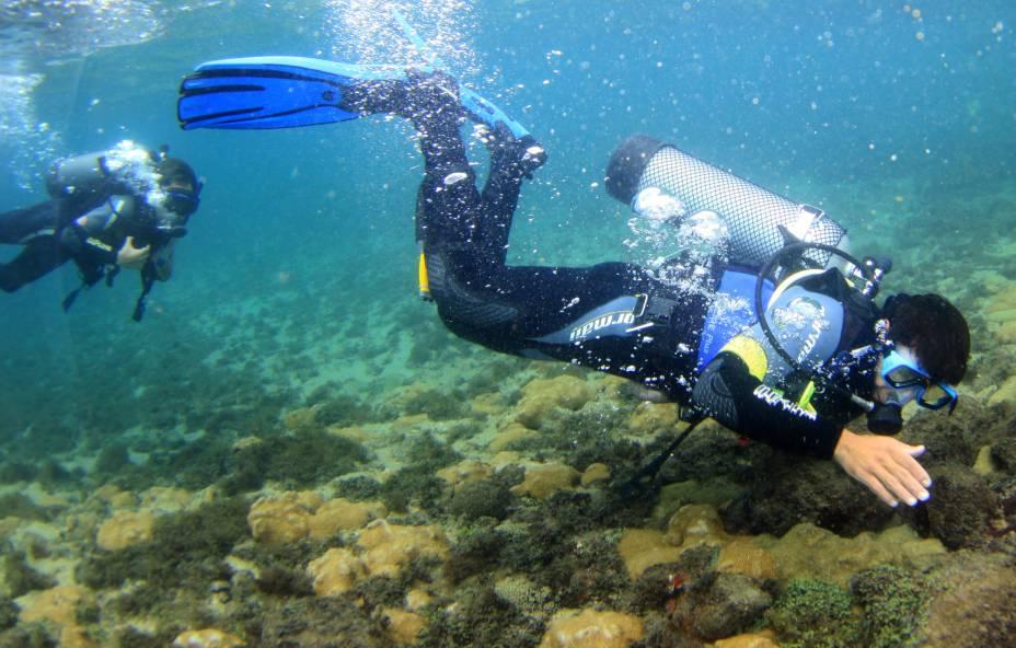Não é preciso ter experiência para mergulhar em Ilhabela (SP). Instrutores dão uma breve aula e levam os turistas para um mergulho autônomo de 8 m de profundidade na Ilha das Cabras (eles operam o equipamento e o visitante fica livre para apreciar o cenário). Também há cursos e saídas para quem tem certificação.
