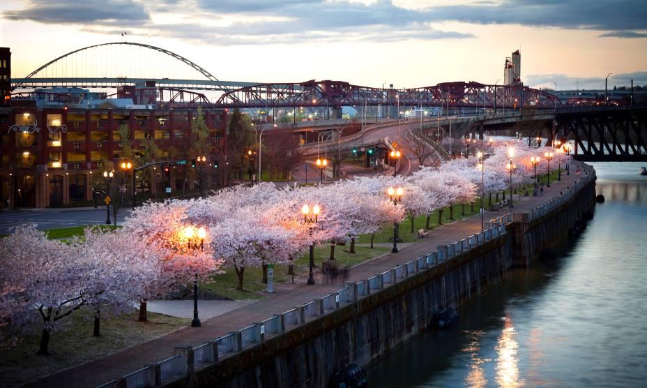 O Tom McCall Waterfront Park em Portland, USA