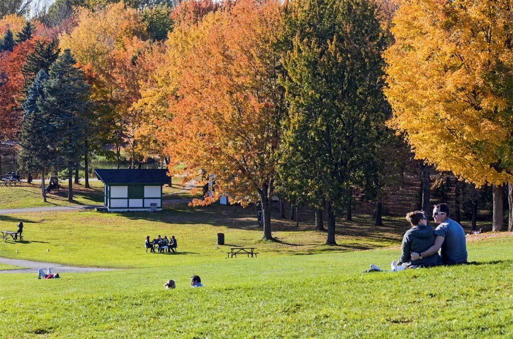 Tons de outono no esplendoroso Parc du Mont-Royal