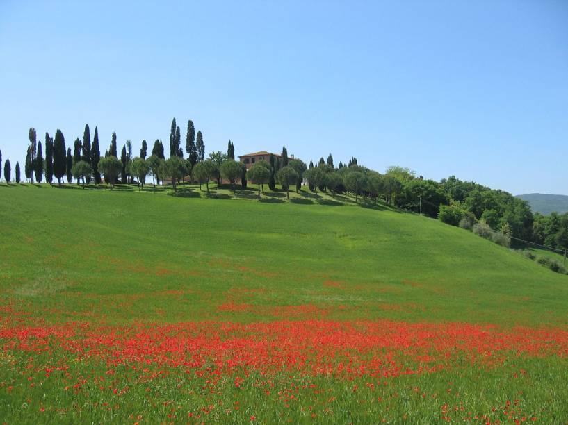 As suaves e coloridas colinas da Toscana sob o sol da primavera