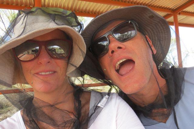 Uluru_moscas2