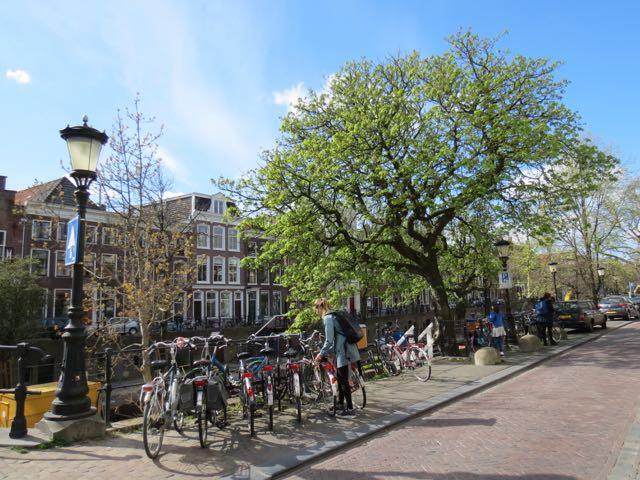 Numa cidade de 330 mil habitantes, 90 mil deles se deslocam DIARIAMENTE em bici