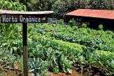 Horta orgânica do hotel
