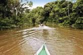 Barco passando pelo rio Javari, na floresta Amazônica, com árvores nas duas margens