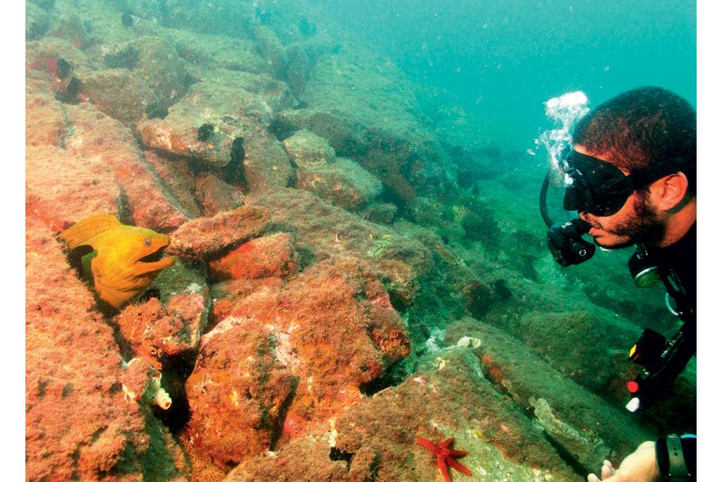 Mergulho na Ilha das Cabras