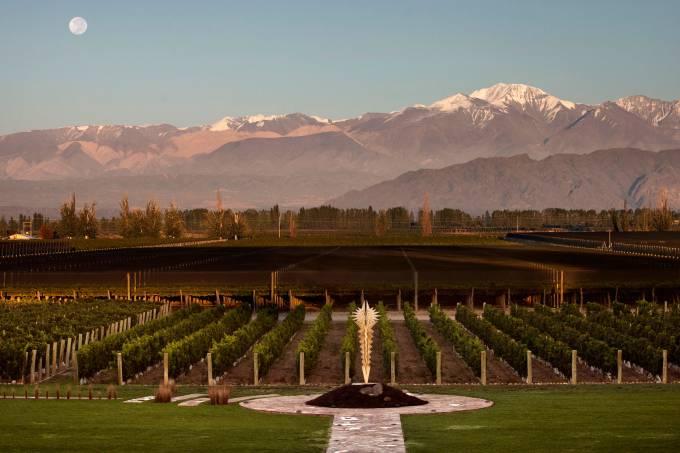 vineyards-2-gentileza-bodega-norton-mendoza-argentina-divulgacao.jpeg