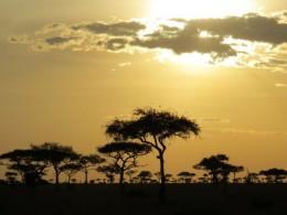 Zanzibar + Serengeti + Kilimanjaro- como conciliar os hits da Tanzânia numa viagem