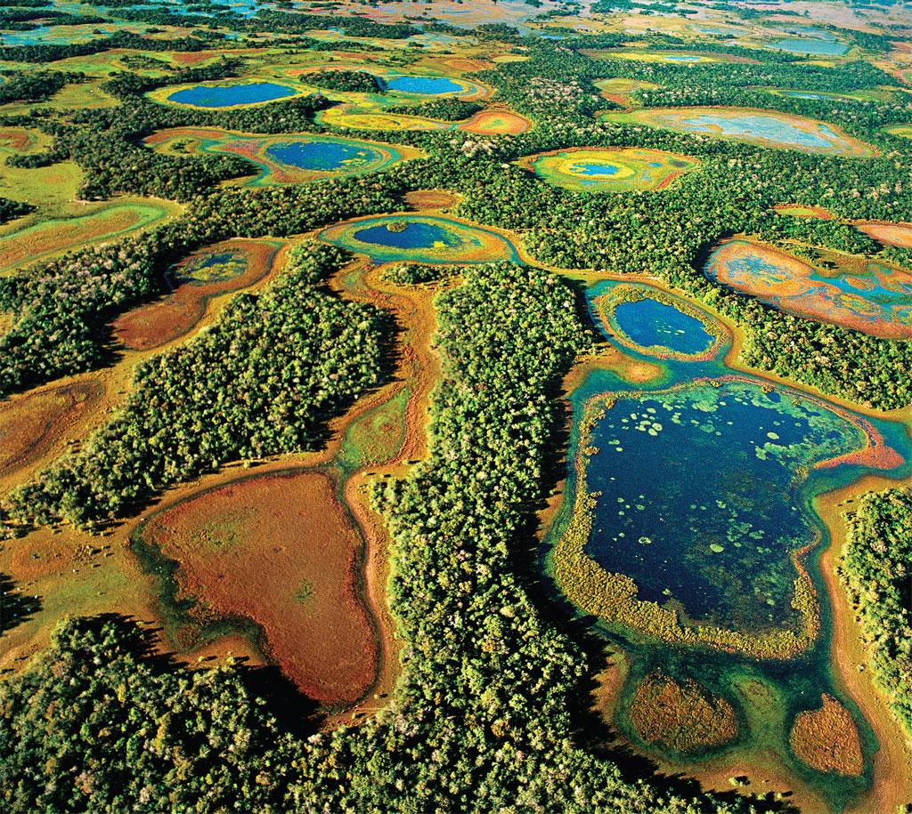 Os alagados do Pantanal Sul na região de Aquidauana