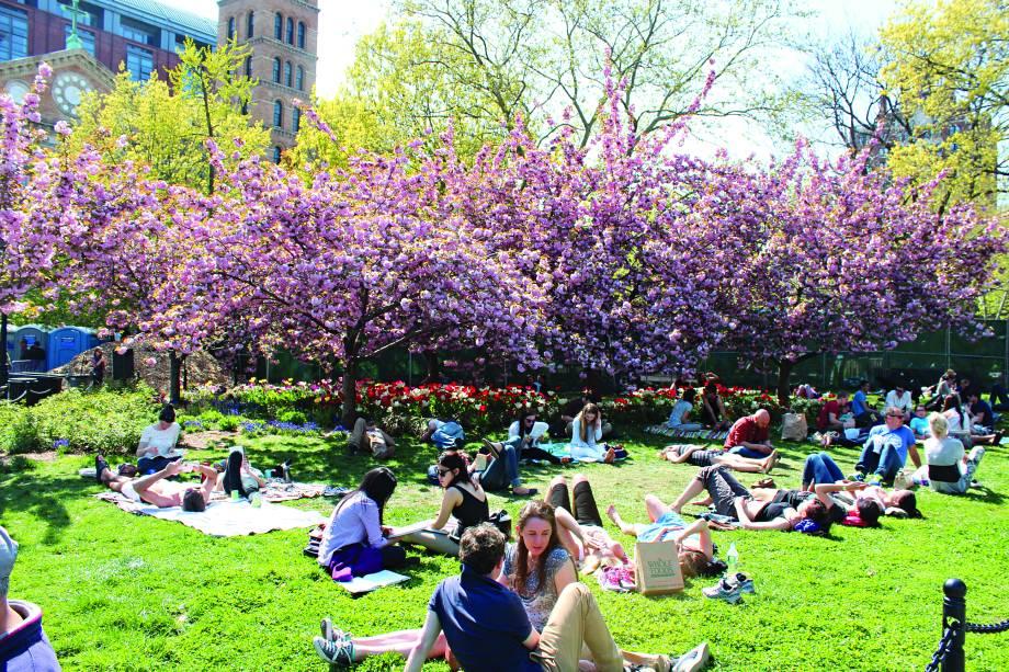 """""""A Washington Square é a cara da cidade, com estudantes almoçando pelos gramados, músicos, pintores, cachorros, crianças... além do arco de mármore que dá o charme da praça. Ande até a <a href=""""http://viagemeturismo.abril.com.br/atracao/bleecker-street/"""" target=""""_blank"""">Bleecker Street</a>, repleta de lojas e restaurantes. O lendário jazz club <a href=""""http://viagemeturismo.abril.com.br/restaurante/blue-note/"""" target=""""_blank"""">Blue Note</a> e o clube de humor <a href=""""http://www.comedycellar.com/"""" target=""""_blank"""">Comedy Cellar</a> estão ali do lado."""""""
