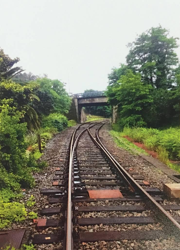 Um trilho de trem, cercado por árvores dos dois lados, centraliza-se na imagem. Mais à frente, o trilho passa por baixo de uma ponte de cimento.