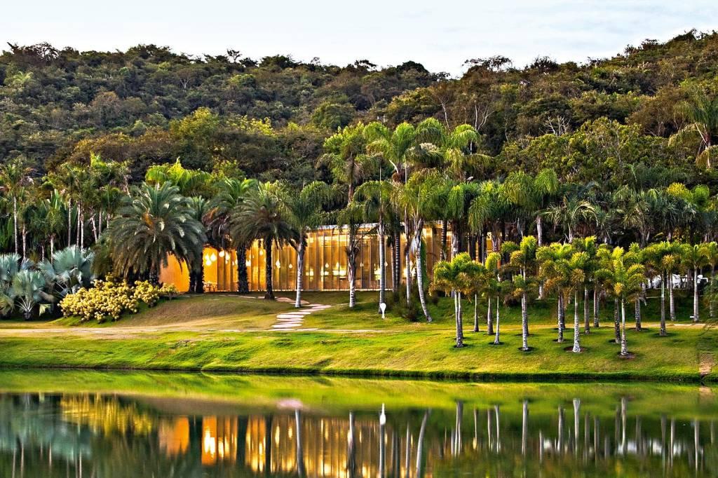 Uma construção escondida entre palmeiras e com paredes de vidro revela um restaurante à beira de um lago