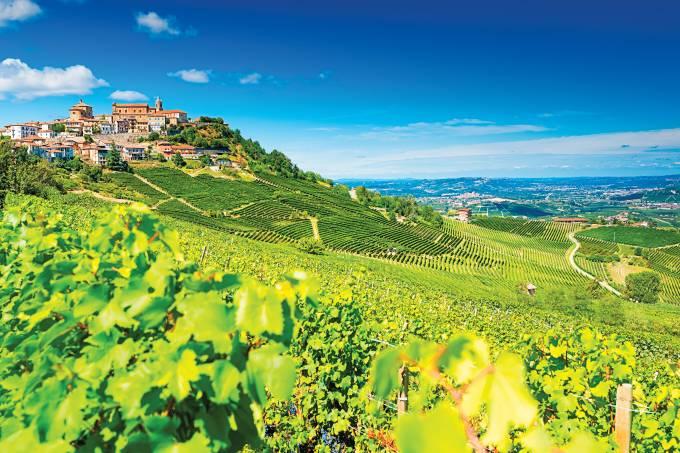 Vinhedos da região do Langhe, no Piemonte, Itália