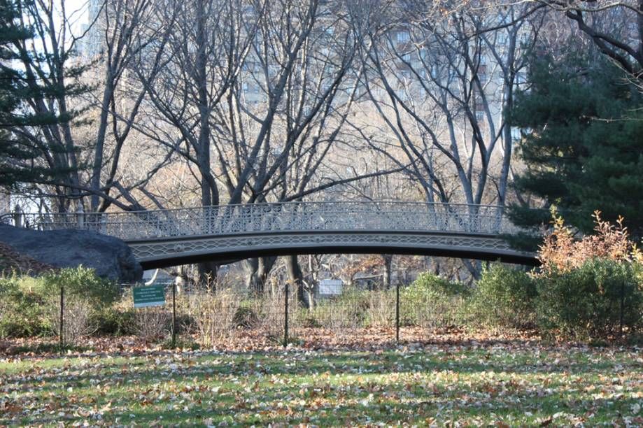 O Central Park, símbolo de Nova York, ocupa o equivalente a 50 quadras de extensão, entre a região de Midtown e o Harlem. Símbolo do lazer gratuito nova-iorquino, o parque recebe 25 milhões de visitantes por ano