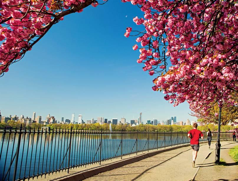 Considerado o primeiro parque público dos Estados Unidos, o Central Park é um dos maiores símbolos de Nova York