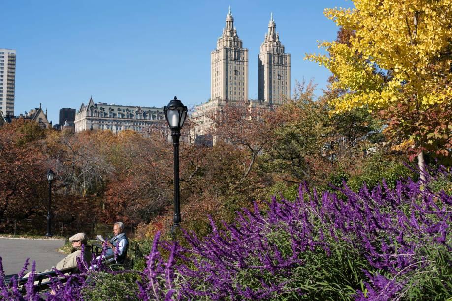 Estima-se que 25 milhões de pessoas passam pelo Central Park todos os anos