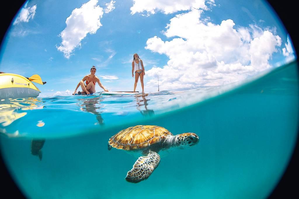 Praia de Peebles, Barbados, Caribe
