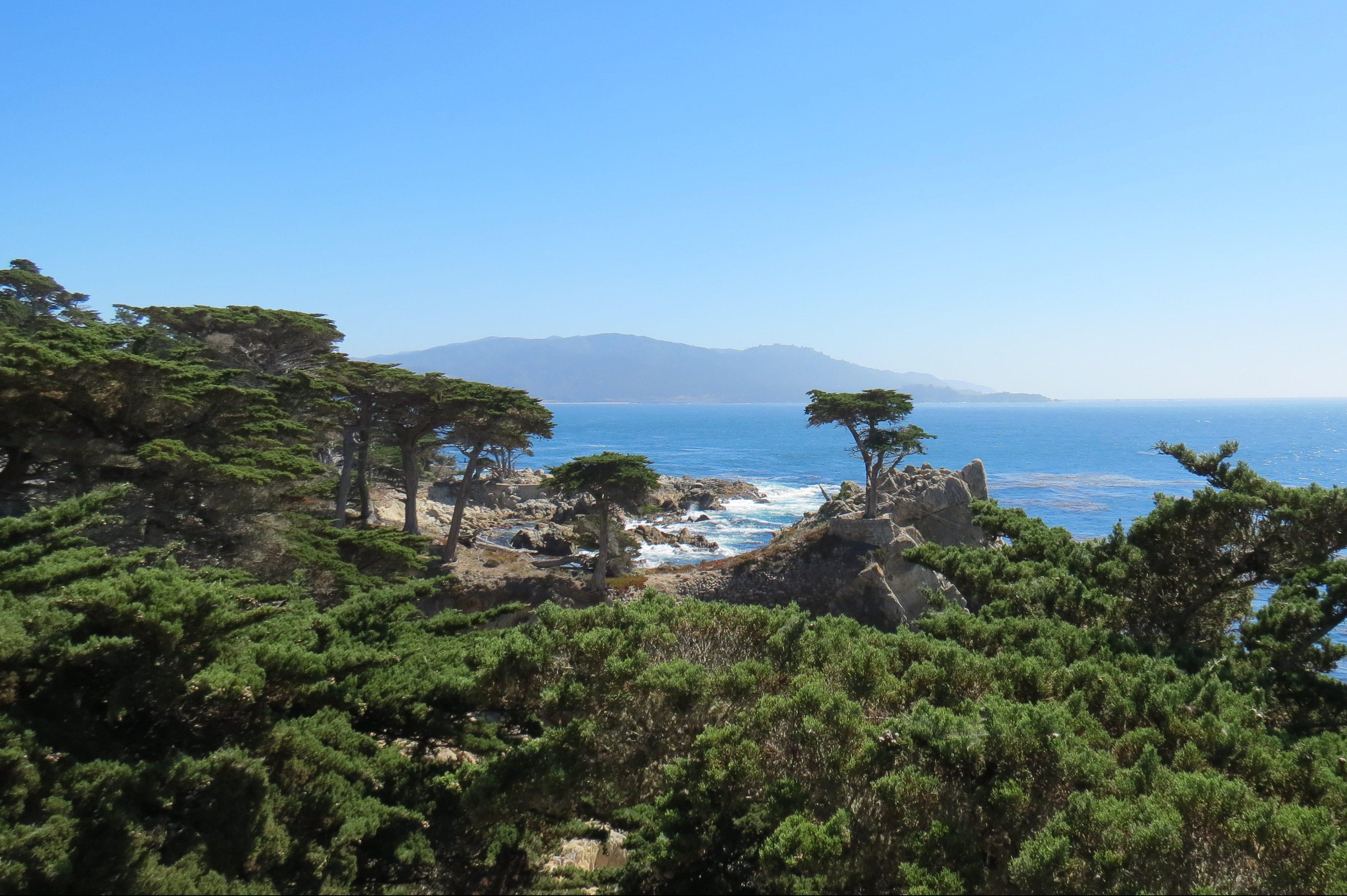 Está aberta! Essa estradinha panorâmica liga Monterey a Carmel, passando por praias desertas, uma colônia de leões-marinhos e paisagens como a do Cipreste Solitário (foto)