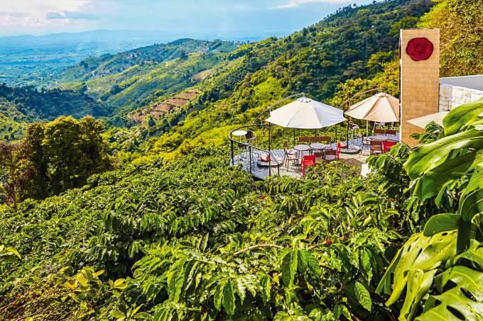 Terraço do Café San Alberto, Quindio, Colômbia