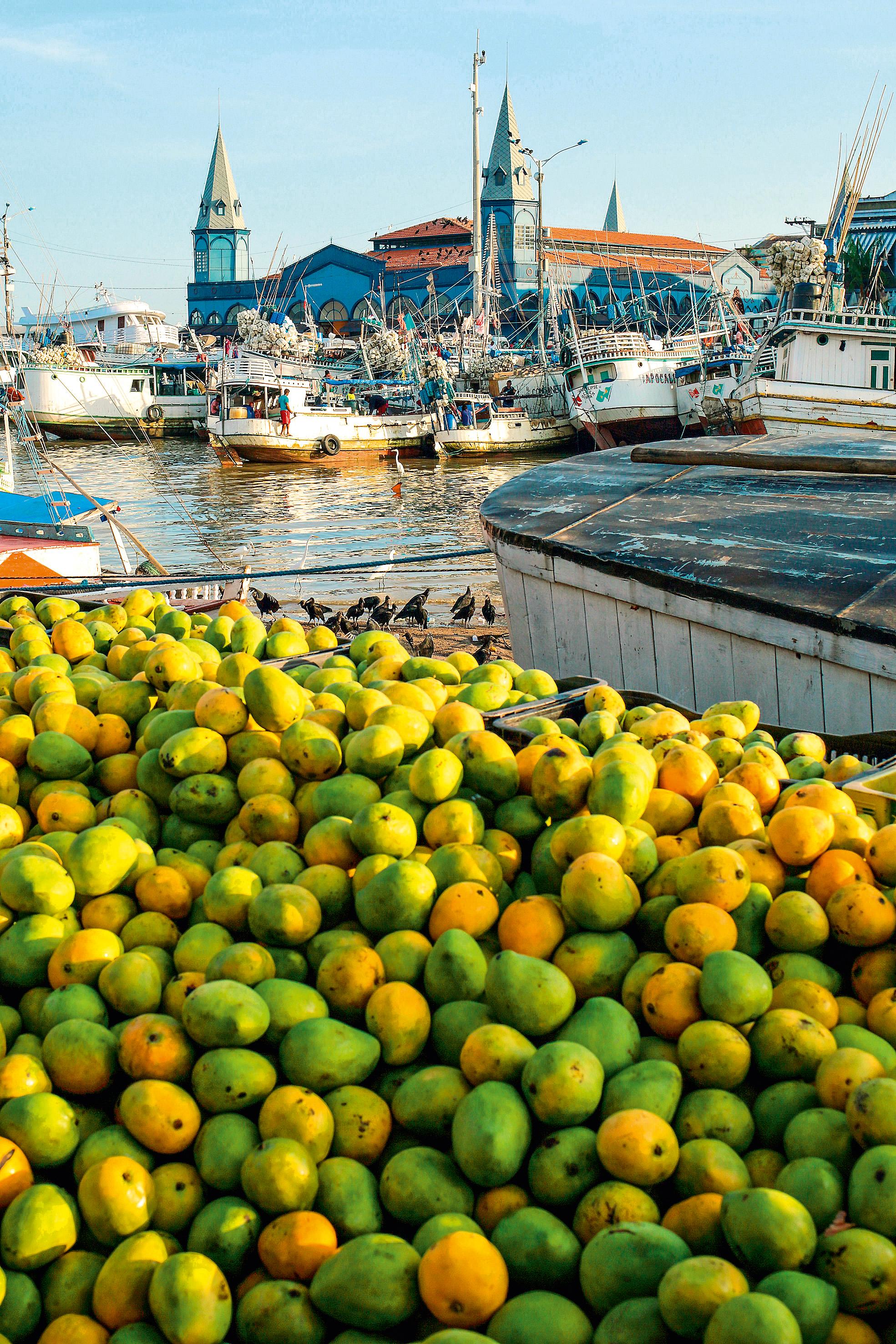Barcos lotados de frutas e outros produtos atracam no porto de Ver-o-Peso; em primeiro plano, mangas verdes e maduras empilhadas