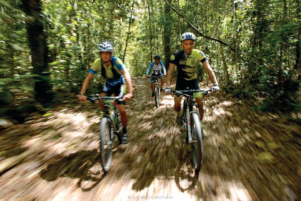 Três ciclistas, desfocados por conta da alta velocidade, pedalam em direção à câmera por uma trilha no meio da floresta