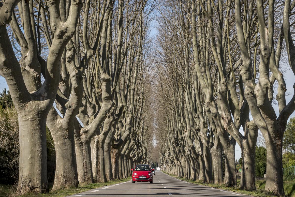 Arredores de St-Rémy-de-Provence: o caminho é também o destino