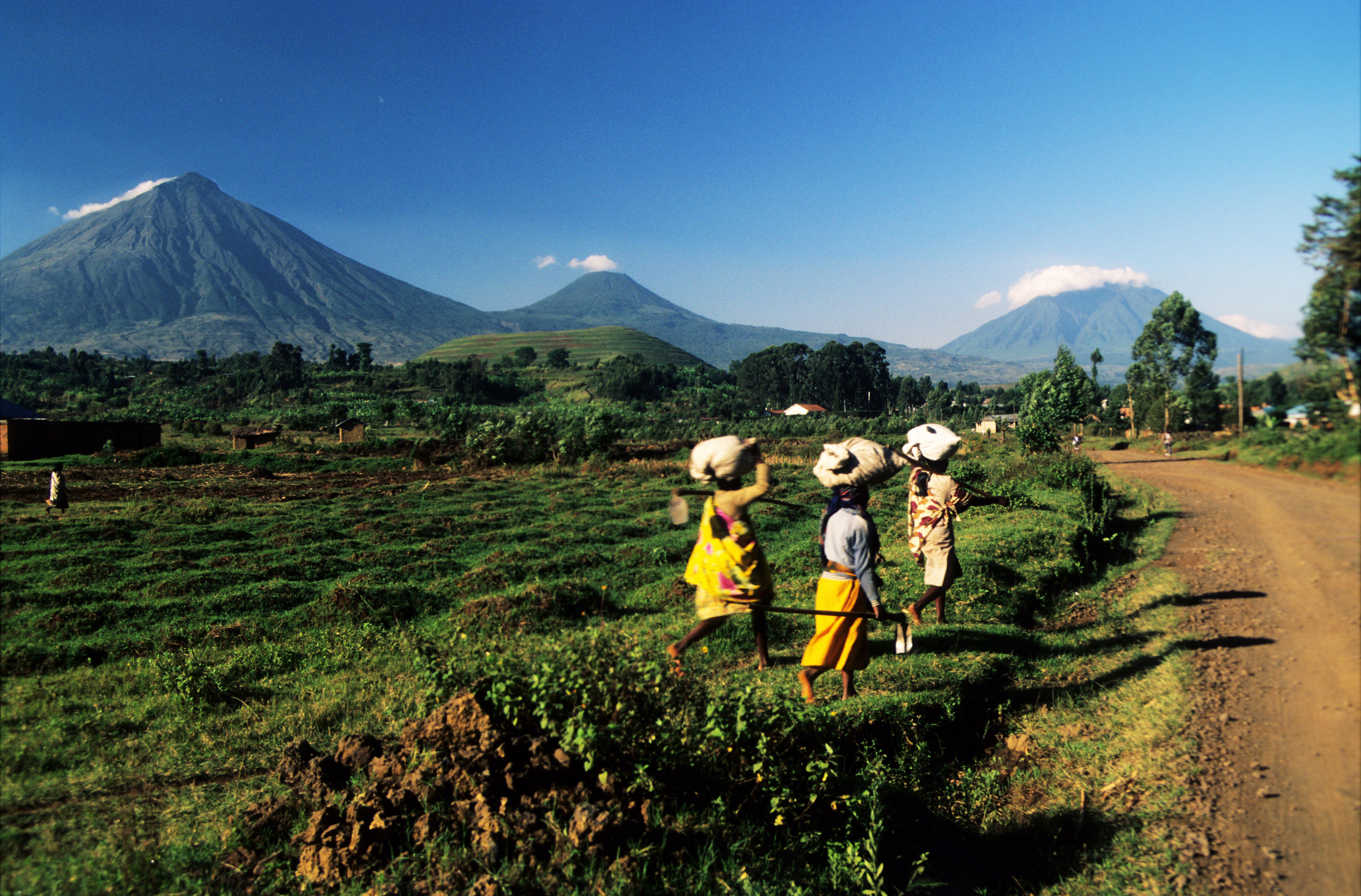 mulheres trabalhando em isoro, Virungas