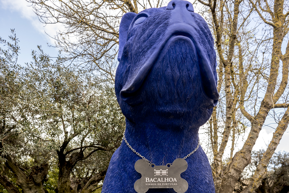 A mascote BAC, um imenso bull dog azul: boas-vindas