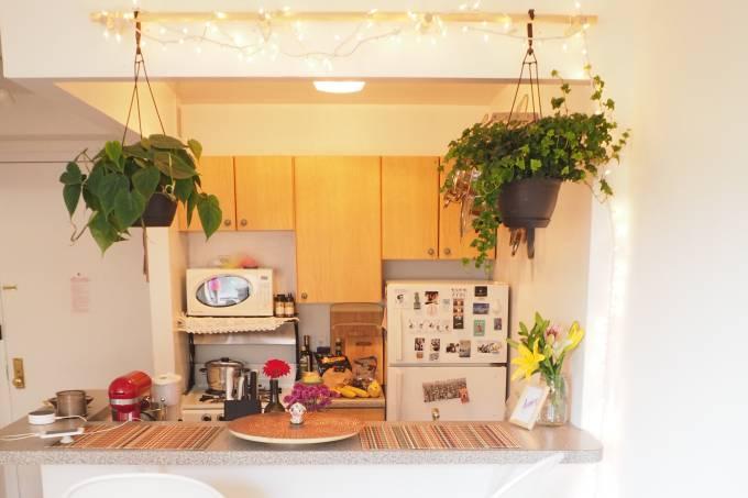 Cozinha de apartamento em Nova York