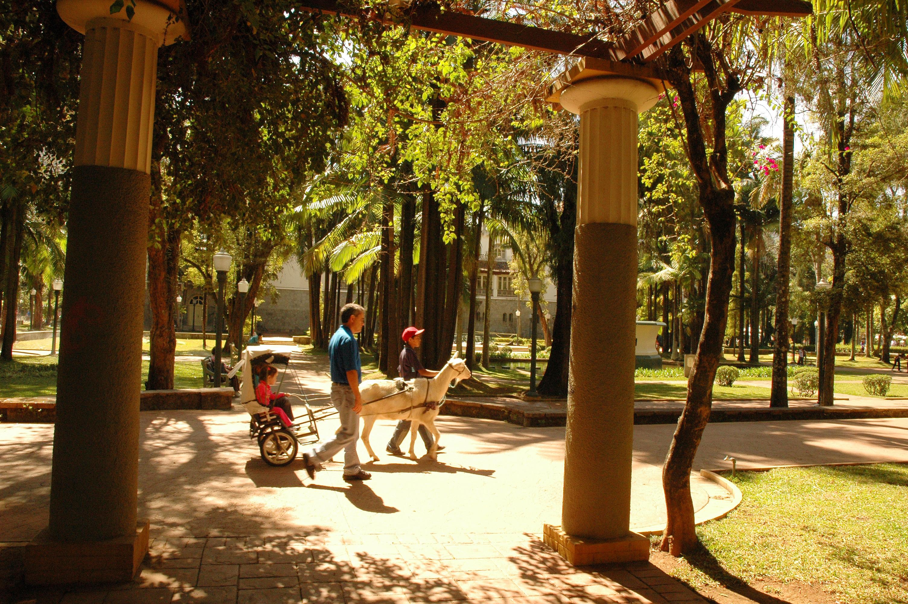 O passeio de charrete nas praças públicas de Poços de Caldas é perfeito para as crianças. Crédito: