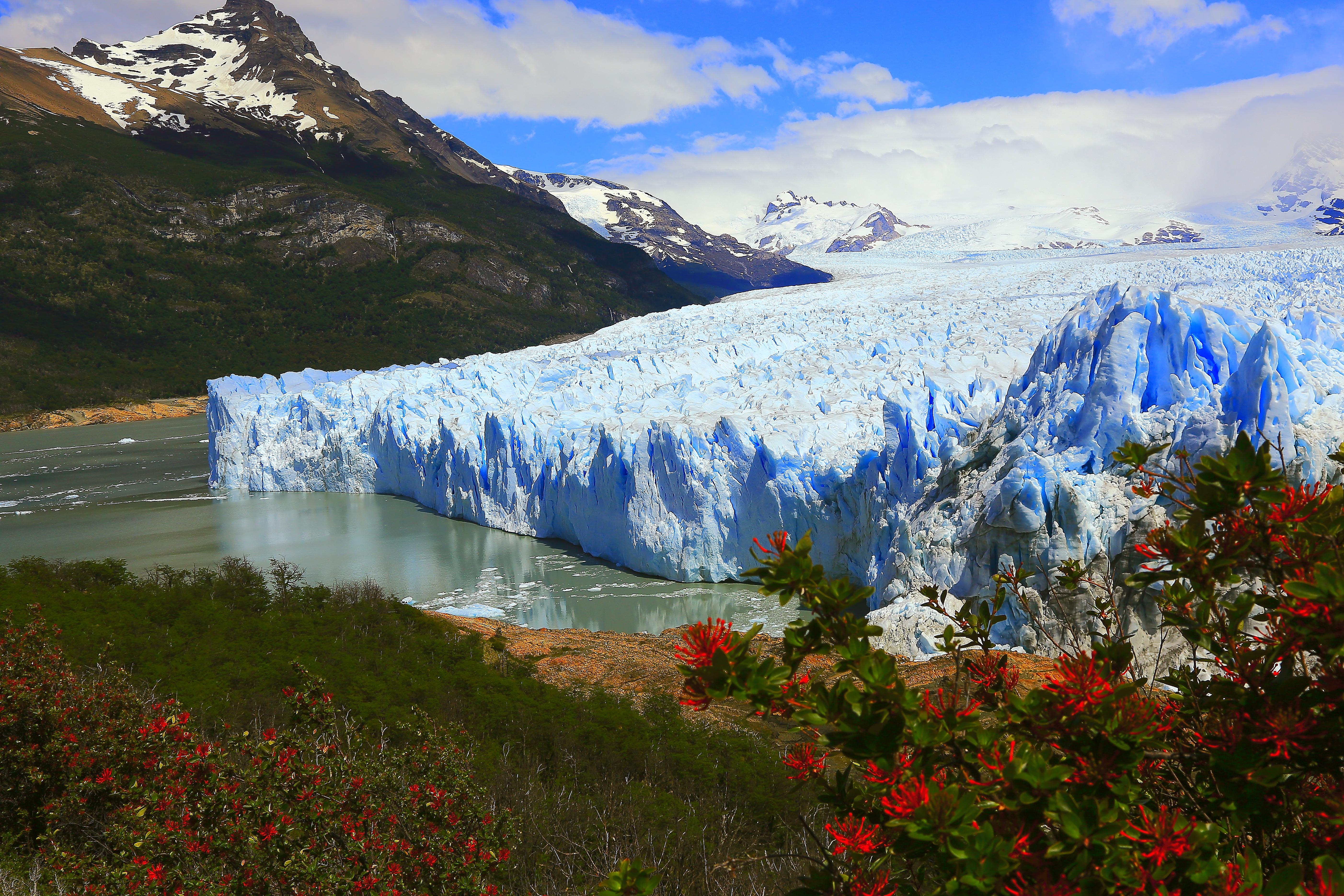 Geleira Glaciar Perito Moreno em El Calafate. Crédito: