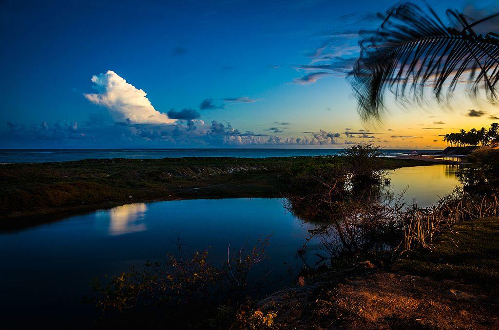 Praia da Lagoa do Pau, em Coruripe (AL): Boa para quem busca tranquilidade