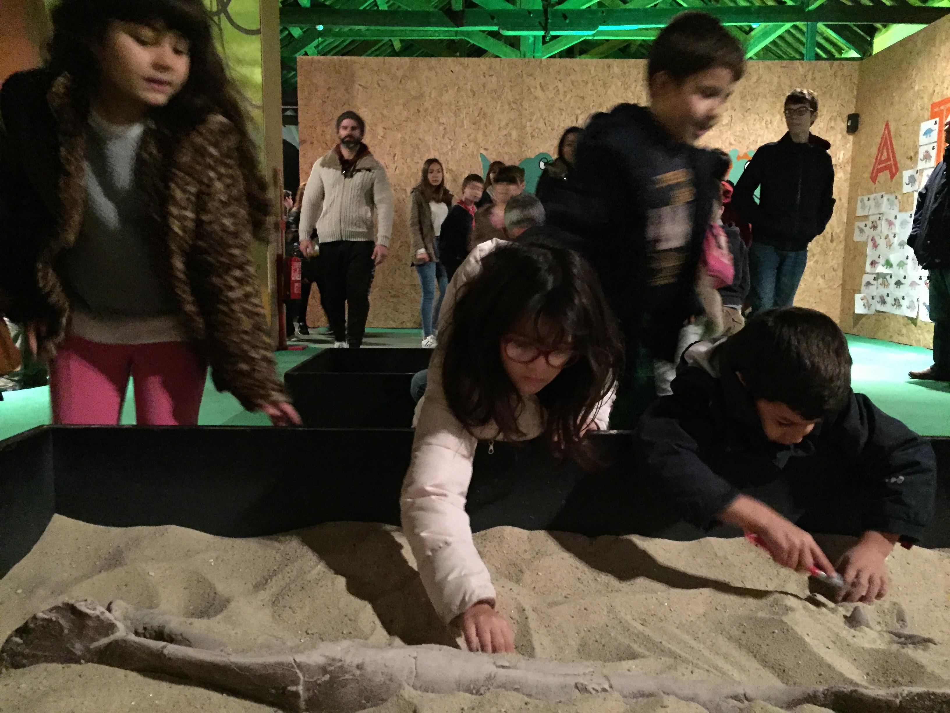 Tanques de areia para procurar os fósseis: atividades interativas