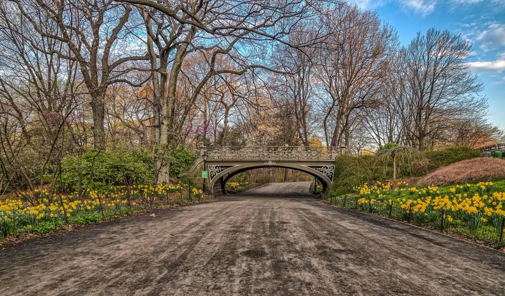 Central Park na primavera, Nova York