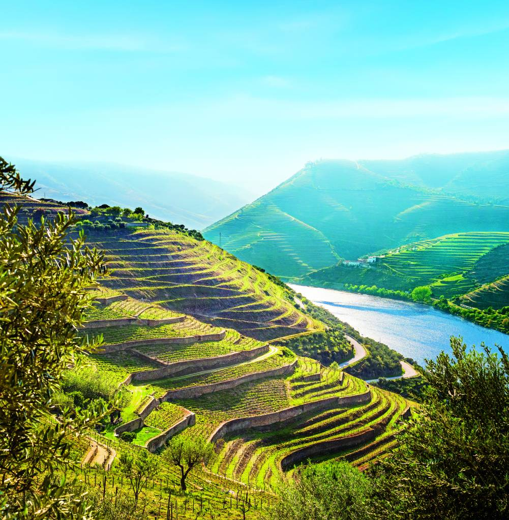 Vale do Douro, Portugal