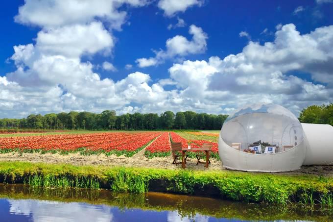 Tulip Pod, hospedagem em Keukenhof, Holanda