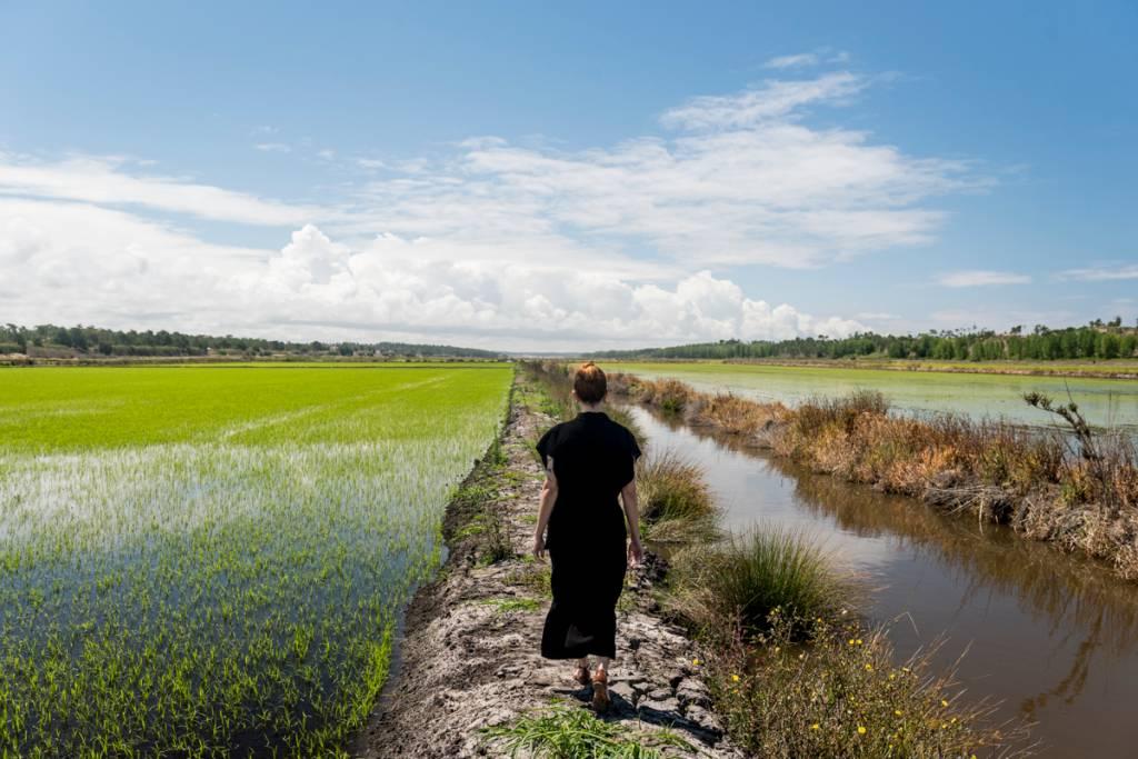 Os imensos arrozais que cercam a vila