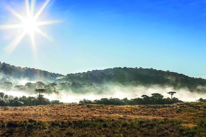 Dissipação da neblina durante manhã ensolarada na Serra Gaúcha