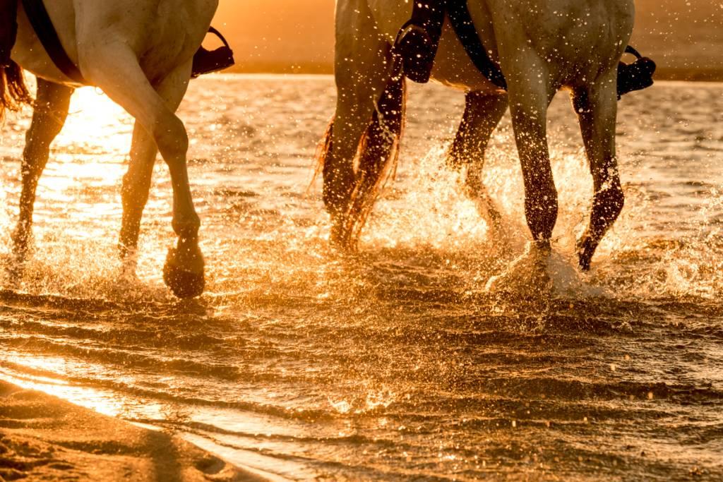 Banho de água doce na Lagoa de Melides, pertinho do mar