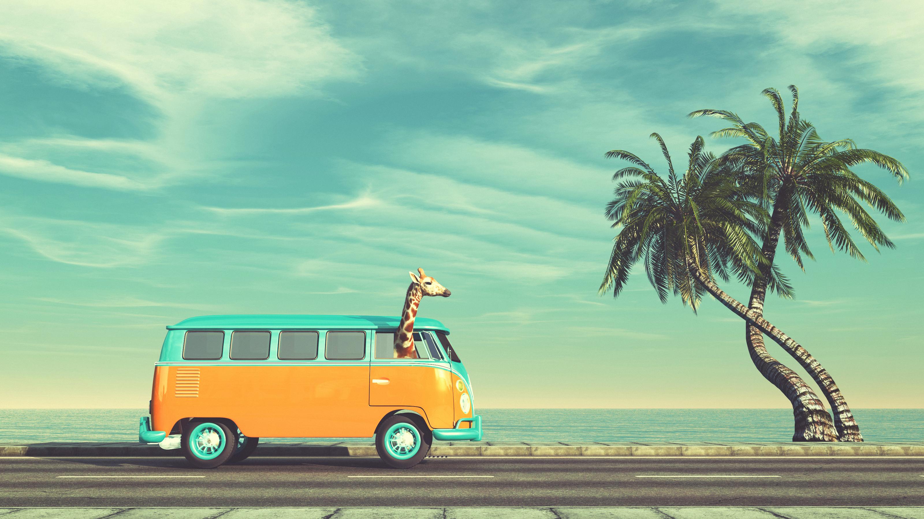 Girafa em van - viagem com animais