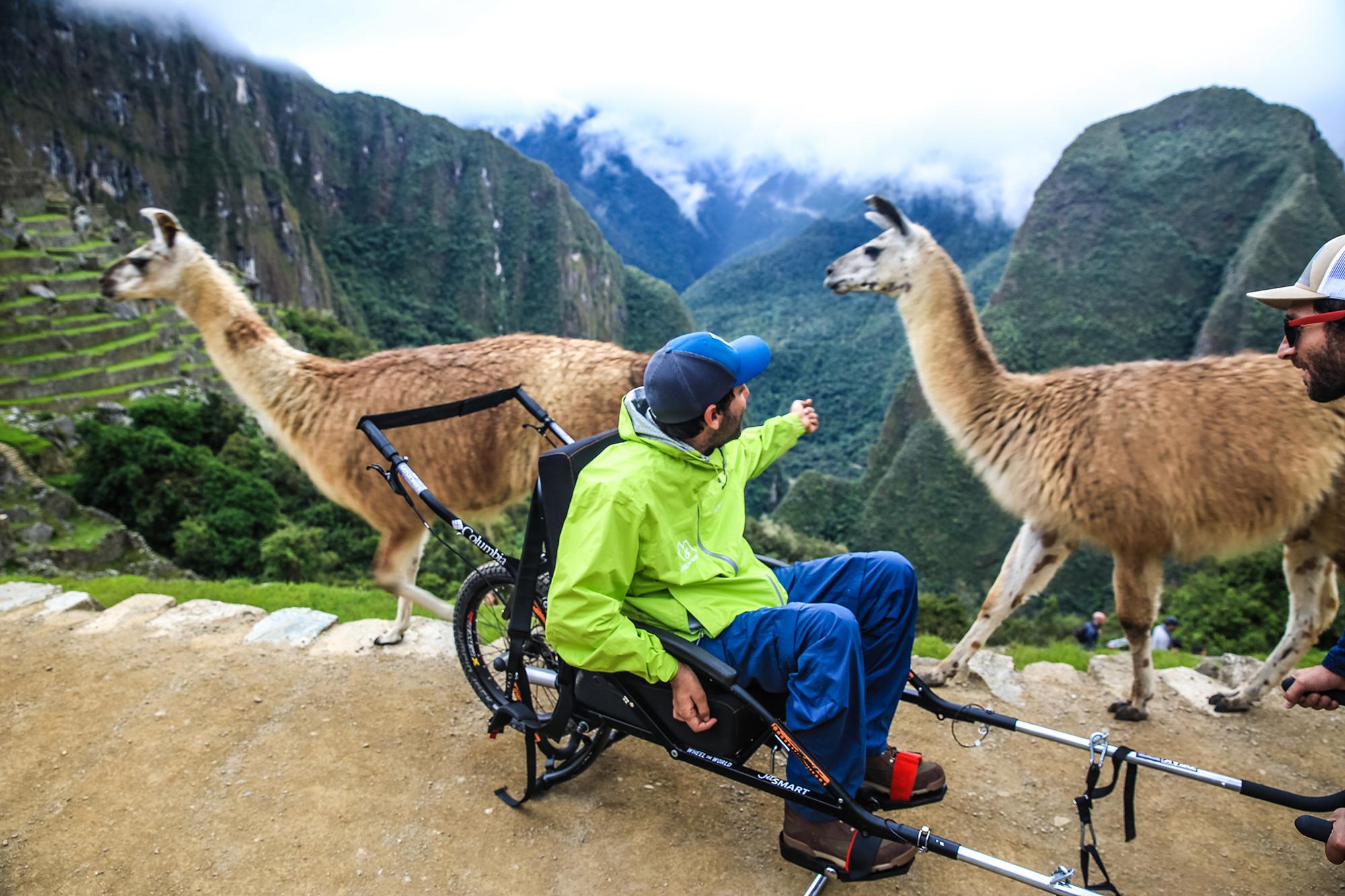 Cadeirante com lhamas em Machu Picchu, Cusco, Peru