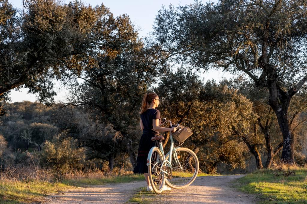 Entre oliveiras e sobreiros: fim de tarde dourado by bike
