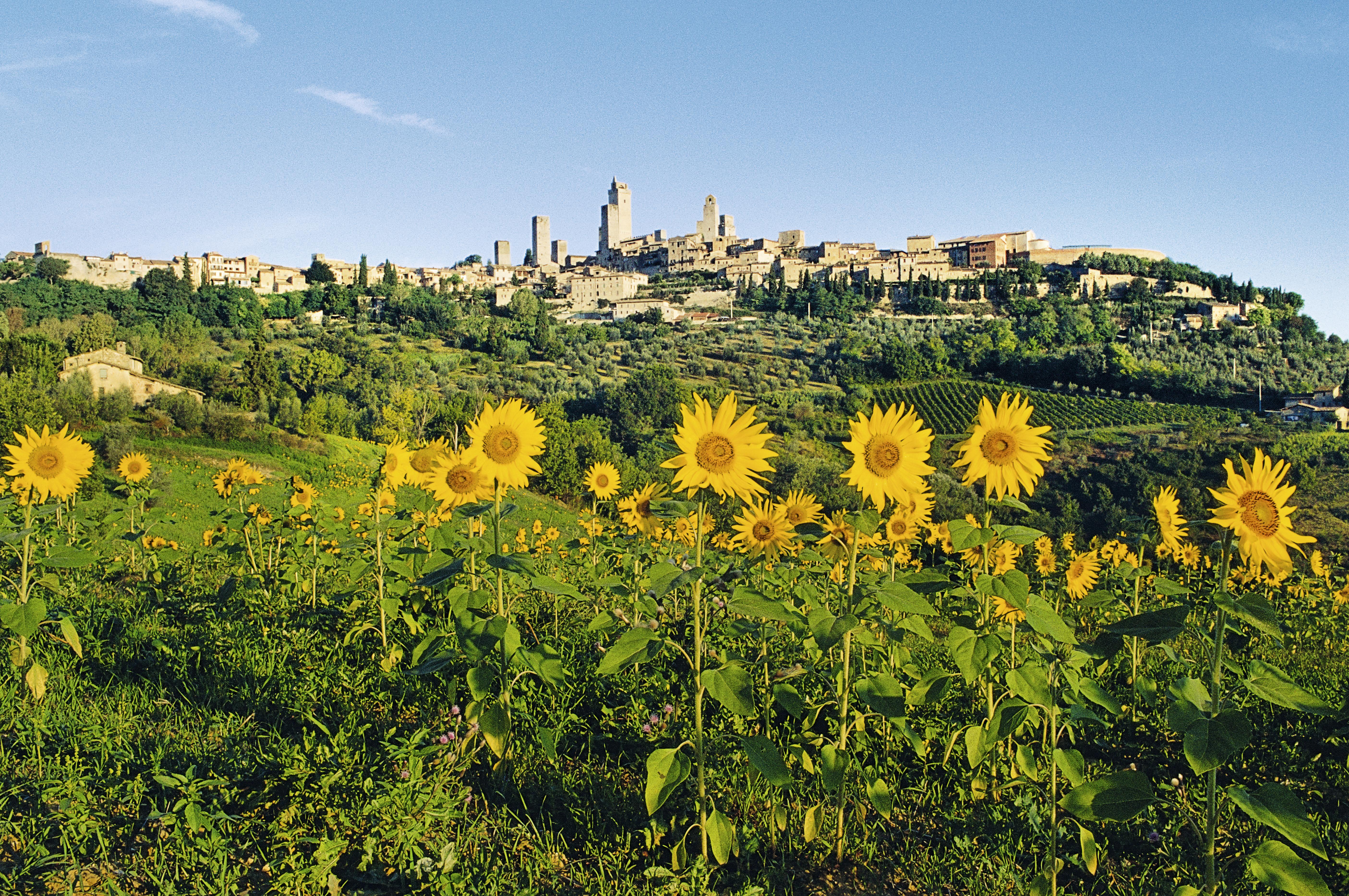 As torres de San Gimignano e um cenário translumbrante