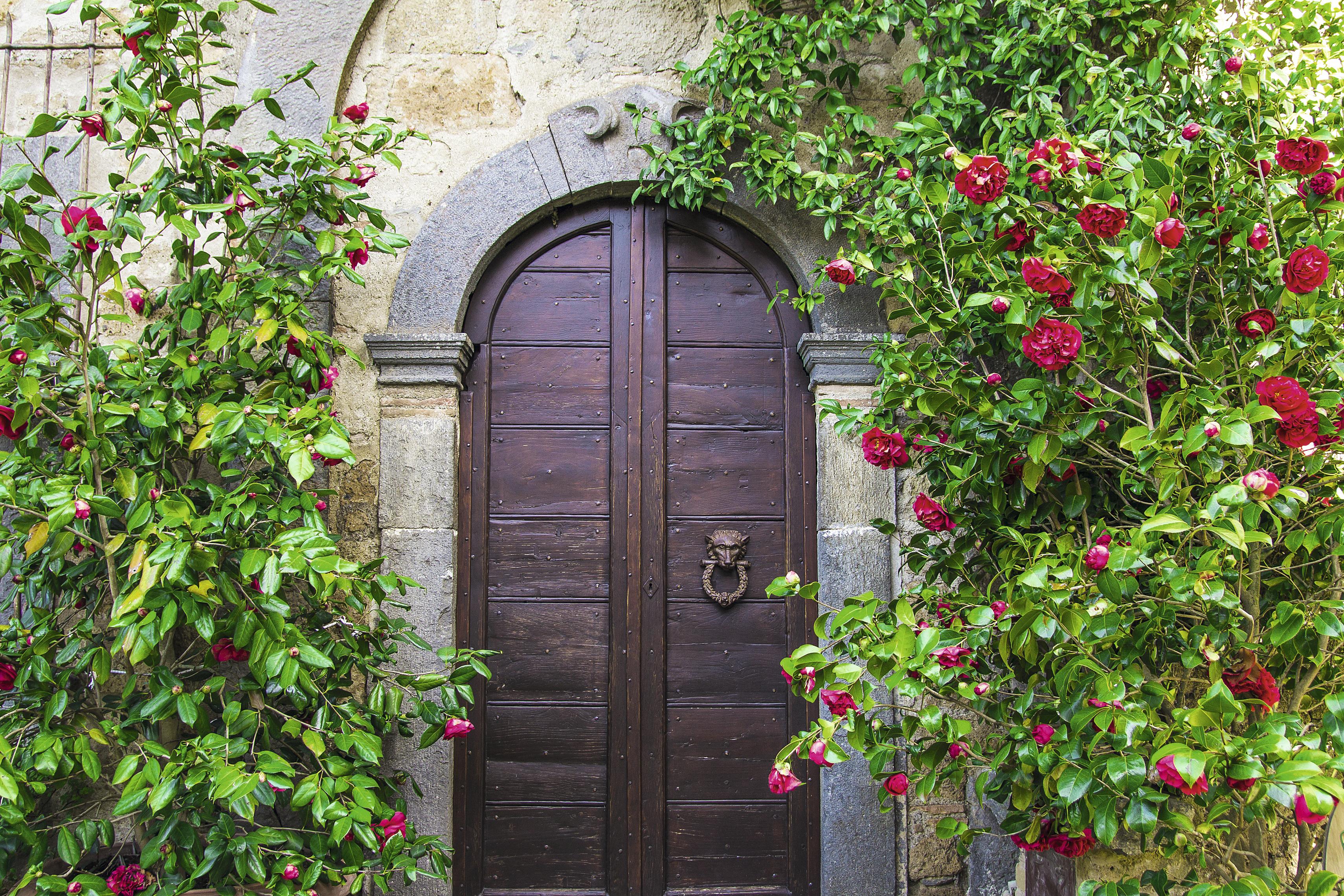 Uma das portas decoradas com flores em Civita di Bagnoregio