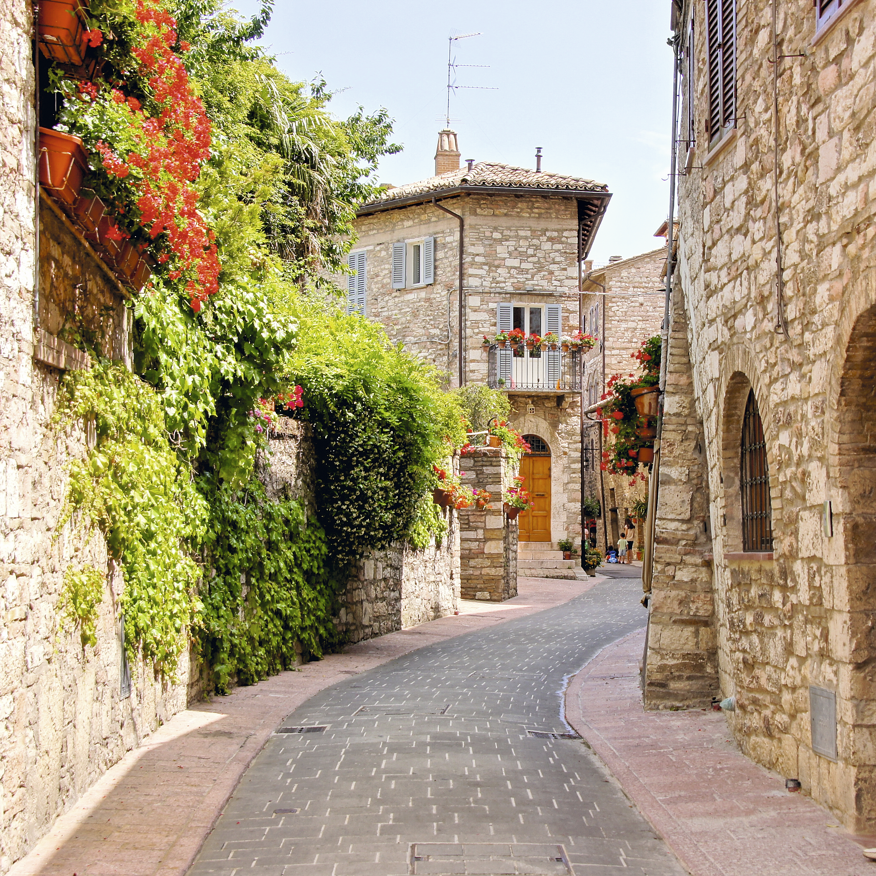 Ruela grassinha em Assis, Úmbria, Itália